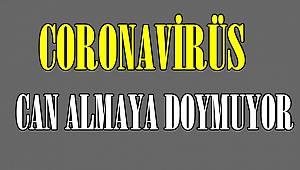 Coronavirüs Can Almaya Doymuyor