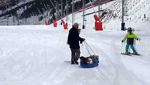 Erzurum'da Hasta buzağıyı kızakla veterinere götürdü