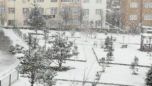 Erzurum'da Nisan ayında kar sürprizi