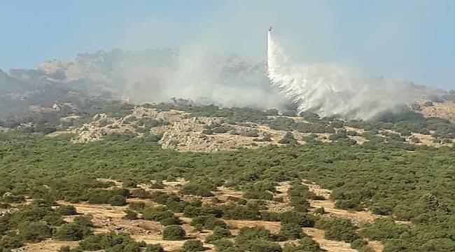 Balıkesir'deki orman yangını kontrol altına alınamıyor