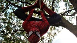 Kocaeli'nde örümcek adam şaşkınlığı