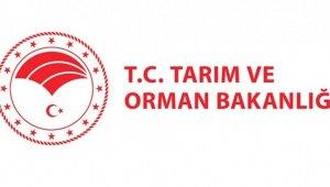 İslam Gıda Güvenliği Teşkilatı 3. Genel Kuruluna Tarım ve Orman Bakanlığı ev sahipliği yapacak
