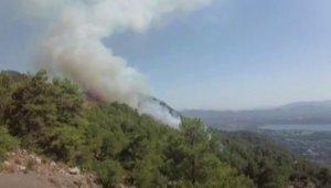 Köyceğiz ormanları da yanmaya başladı
