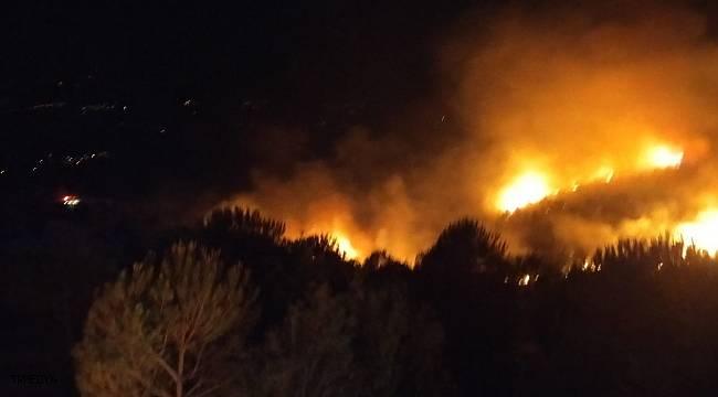 Nazilli'deki orman yangınını söndürme çalışmaları gece de devam ediyor