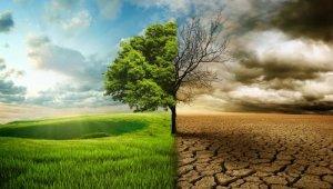 """Dünya Meteoroloji Örgütü: """"Atmosferdeki sera gazı birikimi 2020'de rekor düzeye ulaştı"""""""